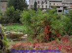 Sale House 7 rooms 108m² Dornas (07160) - Photo 21
